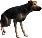 Bestiary Dog full.png