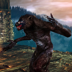Werewolf in <i>The Witcher 2 Arena</i>