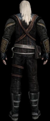 Geralt 6 back
