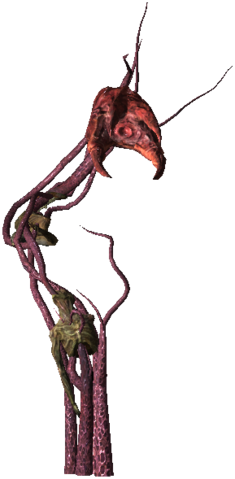 File:Bestiary Archespore full.png