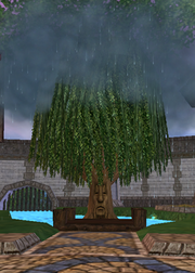 Torrence the Storm Tree