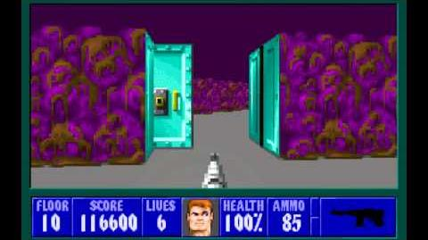 Wolfenstein 3D (id Software) (1992) Episode 1 - Escape From Castle Wolfenstein - Floor 10 HD