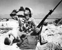 Tarawa Marine, 1943