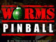 Pinball Title