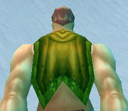 Greenweave Cloak, Snow Background, Human Male