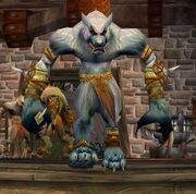 Moonrage Tailor Worgen
