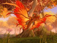 Feral Dragonhawk Hatchling