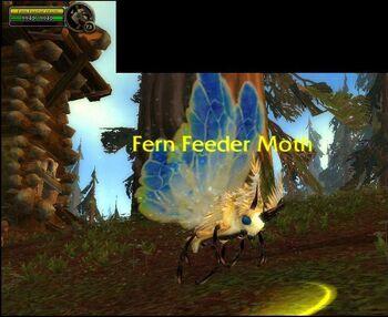 Fern Feeder Moth