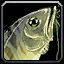 Inv misc fish 28.png