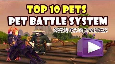 Pet Battle System Top 10 Picks