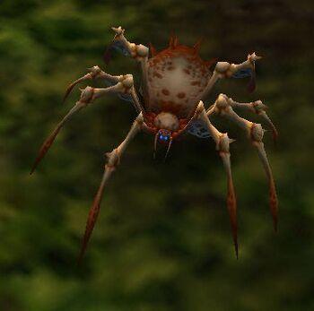 Image of Desert Spider