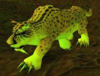 Swamp Jaguar