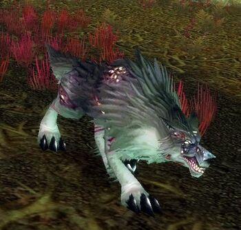 Felpaw Wolf