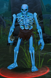 Skeletal Mage