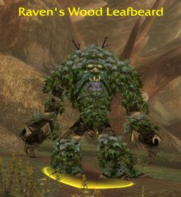 Raven's Wood Leafbeard