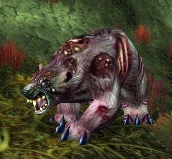 Angerclaw Bear