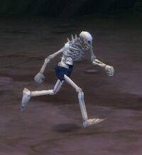 Splinterbone Skeleton