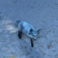 Kun-Lai Summit Arctic-Foxling00