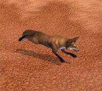 DesertFox