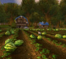 Stonefield Farm