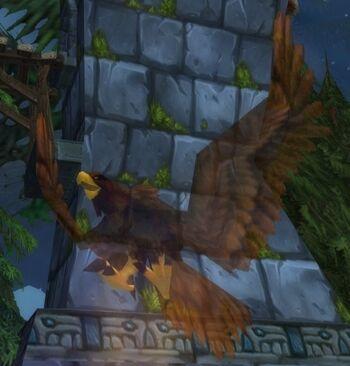 Amani Eagle Spirit