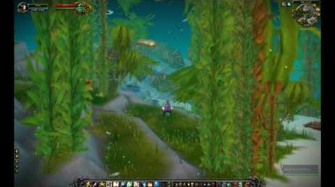 Cataclysm Kelp Forest Zone Review - TankSpot