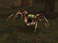 Plague Lurker