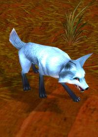 Highlands fox