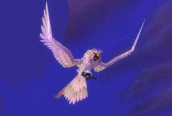Hyjal Owl