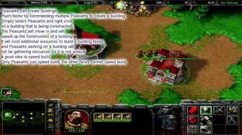 Peasant (Warcraft III)