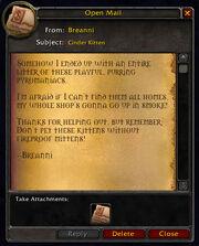 Cinder Kitten letter from Breanni