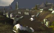 Night Elf forwardcamp at ruins