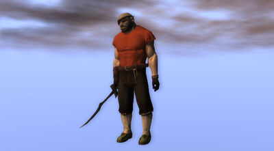 Pirate Swashbuckler