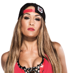 Nikki bella bio