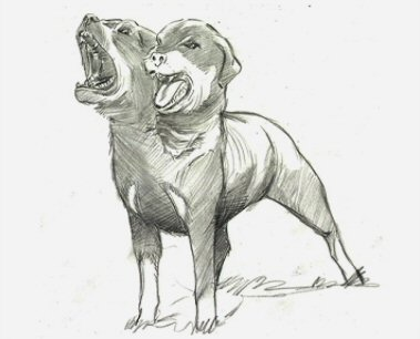 File:Two-headed dog (concept art).jpg