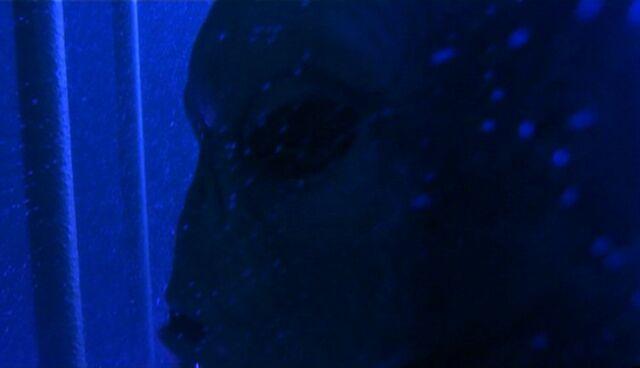 File:Long-clawed alien underwater.jpg