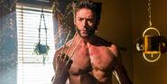 Wolverine 69798