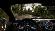 FH3 1STPERSONVIEW