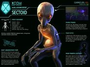 XCOM-EU Sectoid