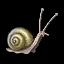 Ashizel icon.png