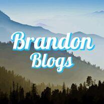 Wikitubia:Interviews/Brandonblogs