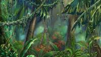 JungleField-JP-Anime-ZX-NC