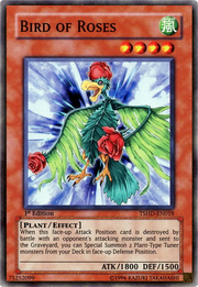 BirdofRoses-TSHD-EN-SR-1E