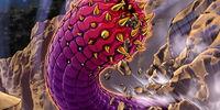 Verme Medusa