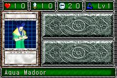 AquaMadoor-DDM-EN-VG