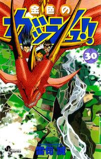 Cover30 jap