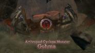 Hyrule Warriors Arthropod Cyclops Monster Gohma Battle Intro (Cutscene)