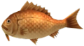 Majora's Mask 3D Fish Dancing Sea Bream (Ocean Fishing Hole).png