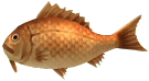 File:Majora's Mask 3D Fish Dancing Sea Bream (Ocean Fishing Hole).png