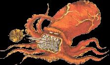 File:Octorok (The Legend of Zelda).png